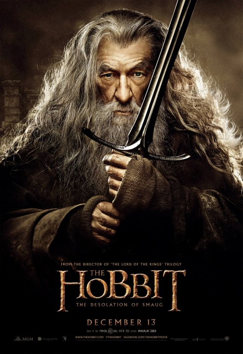 hobbit_the_desolation_of_smaug_ver10_xxlg