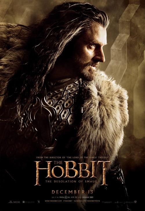 hobbit_the_desolation_of_smaug_ver12_xxlg