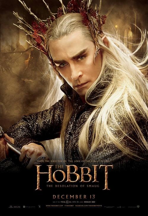 hobbit_the_desolation_of_smaug_ver14_xxlg