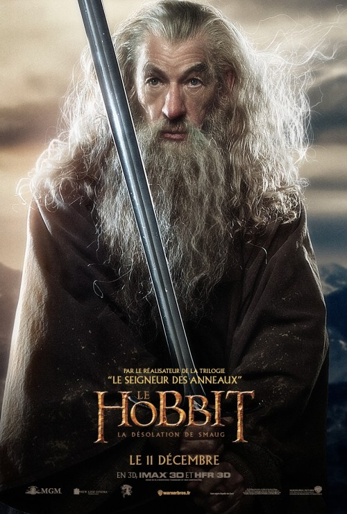 hobbit_the_desolation_of_smaug_ver17_xlrg
