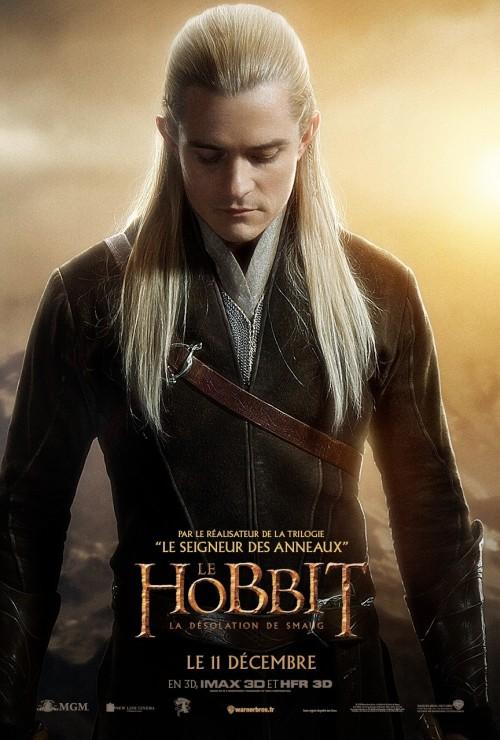 hobbit_the_desolation_of_smaug_ver18_xlrg