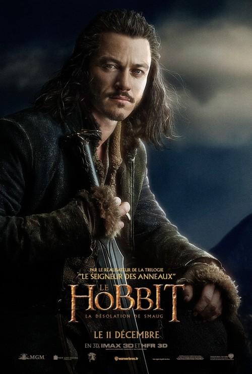hobbit_the_desolation_of_smaug_ver20_xlrg