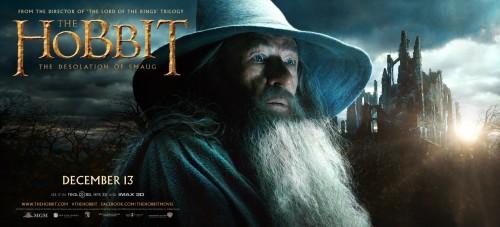 hobbit_the_desolation_of_smaug_ver5_xxlg