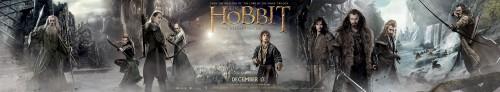 hobbit_the_desolation_of_smaug_ver7_xxlg